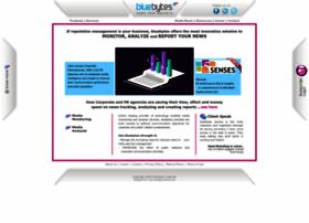 services.bluebytes.info