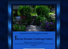 sevenstreamscymbrogi.com
