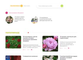 shamanda.ru