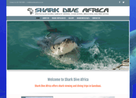 sharkdiveafrica.co.za