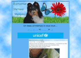 shetland-sheepdog.forumactif.net