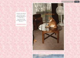 shibaconfessions.tumblr.com