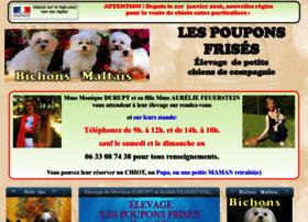 shihtzu.free.fr
