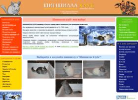 shinshilla-club.ru