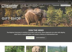 shop.elephants.com