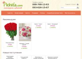 shop.pionita.com