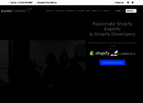 shopifyninjas.com