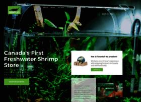 shrimpfever.com