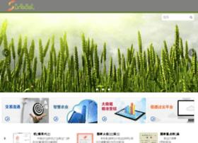 singo.net.cn