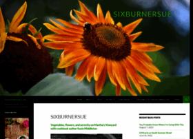sixburnersue.com