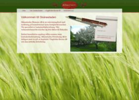 skanestaden.com