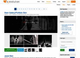 skins.b2evolution.net