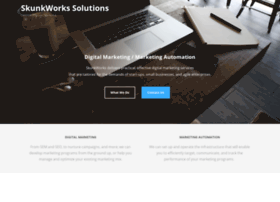 skunkworkssolutions.com