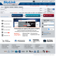 skylinkus.com