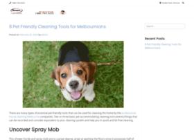 smartcleaningrestoration.com