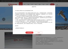 smilestone.com.cn