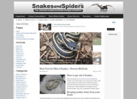 snakesandspiders.com