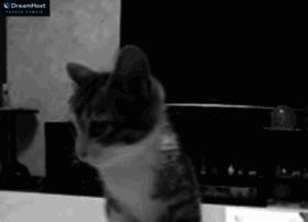 snappynewday.com