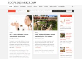 socialenginezzz.com