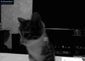 Socialserve.com