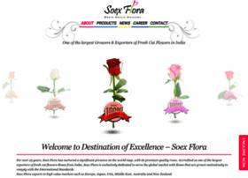soexflora.com