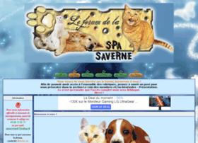 spasaverne67.forumactif.com