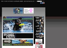 splashdogs.com