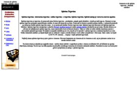 spletnatrgovina.org