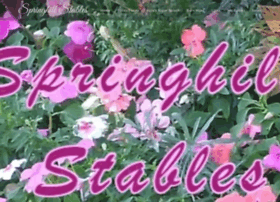 springhill-stables.com