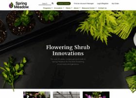 springmeadownursery.com