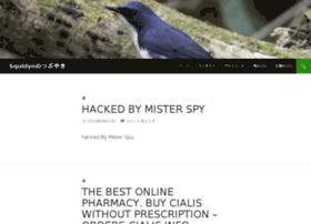 squidyn.com