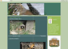 squirrelawareness.blogspot.in