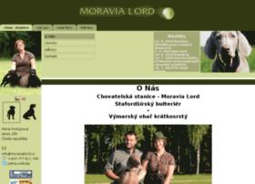 stafordsirsky-bulterier.moravialord.cz