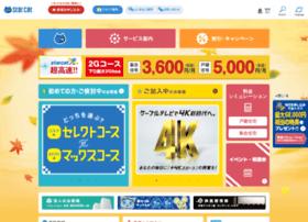 starcat.co.jp