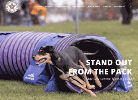 starcityk9training.com