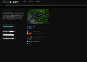 stevebloom.com