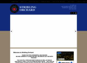 striblingorchard.com