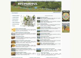 stuparitul.com