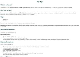 styeye.org