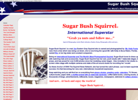 sugarbushsquirrel.com