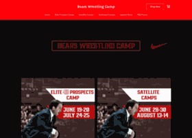 summerwrestlingcamps.com