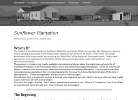 sunflowerplantation.org