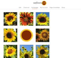 sunflowers.com