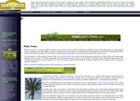 sunpalmtrees.com