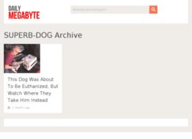 superb-dog.dailymegabyte.com