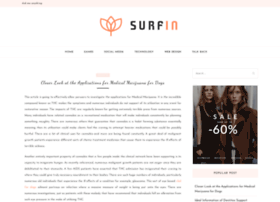 surf-in.org