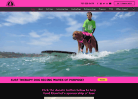 surfdogricochet.com