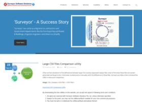 surveyorsoft.com