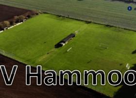 sv-hammoor.de