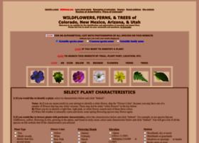 swcoloradowildflowers.com